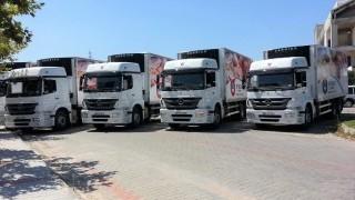 Fresh Meat Truck Body - 28